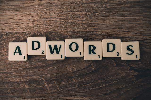 Profesjonalista  w dziedzinie kampani Adwords pomoże i dobierze adekwatną strategie do twojego interesu.